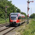 Eine Regionalbahn fährt am Waldrand entlang.