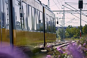 wagenkasten einer AVG-Stadtbahn auf der Strecke bei Heilbronn. Im Hintergrund sind Signalanlagen zu sehen.