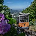 Die Merkur Bergbahn auf ihrem Weg den Berg hinauf.
