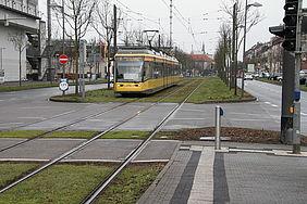 Trambahn im Streckenabschnitt Brauerstraße. Am Streckenrand stehen kahle Bäume.