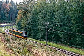 Eine Stadtbahn der AWV durchquert einen bewaldeten Streckenabschnitt im Albtal.